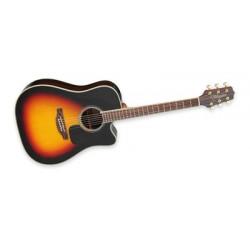 Takemine Western Guitar