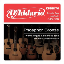 D'Addario Acoustic Bass  Phosphor Bronze