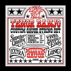 Ernie Ball Banjo strenge